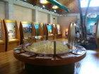 エコミュージアム展示室写真1
