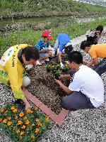 花の植栽1